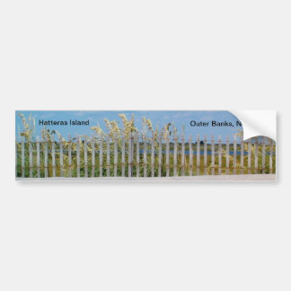 Beach Sea Oats Along the Road on Hatteras Isand Bumper Sticker