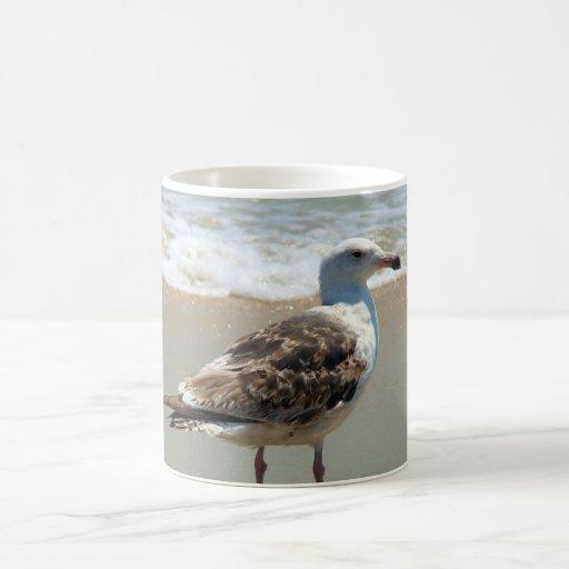 Beach Seagull Coffee Mug