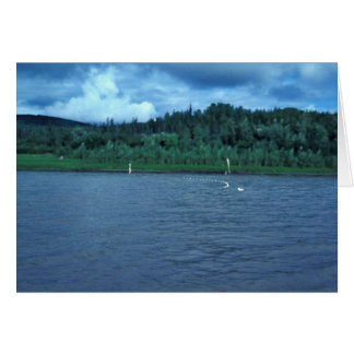 Beach Seine Used for Subsistence Fishing Greeting Card