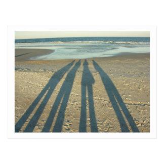 Beach Shadows Postcard