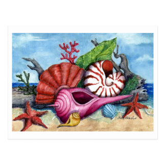 Beach Shells Painting Postcard