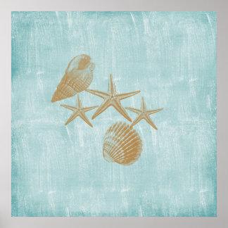 Beach shells posters