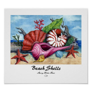Beach Shells Print - Customized