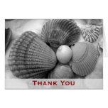 Beach Shells Thank You Note Card