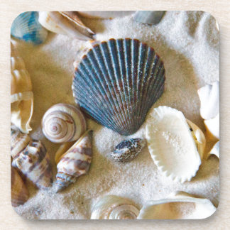 Beach Shells Theme #1 Drink Coaster