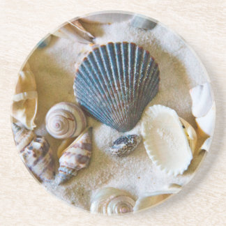Beach Shells Theme #1 Sandstone Coaster