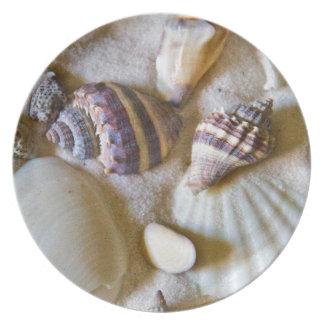 Beach Shells Theme #2 Dinner Plate