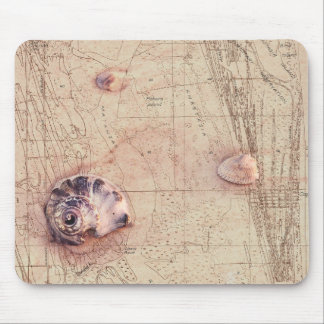 Beach Shells Vintage Florida Map Collage Mouse Pad