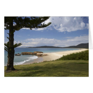 Beach, South West Rocks, New South Wales, Greeting Card