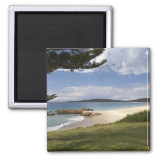 Beach, South West Rocks, New South Wales, Magnet