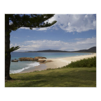 Beach, South West Rocks, New South Wales, Poster