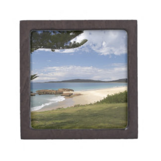 Beach, South West Rocks, New South Wales, Premium Trinket Box