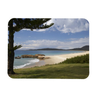 Beach, South West Rocks, New South Wales, Rectangular Magnets