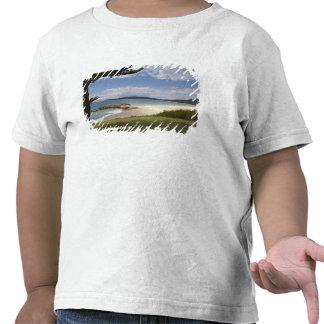 Beach, South West Rocks, New South Wales, Shirt