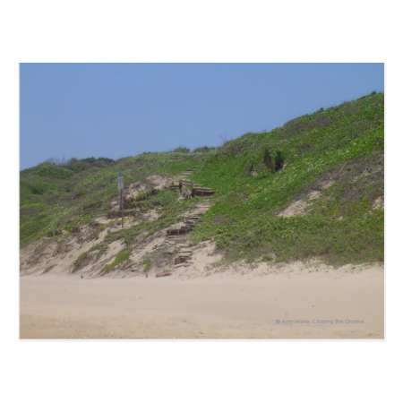 Beach Stairs Postcards