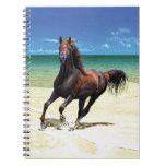Beach Stallion Notebook