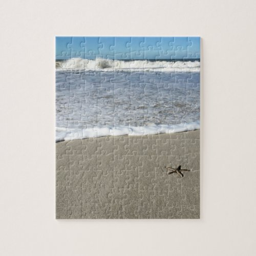 Beach Star Puzzle
