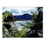 Beach, Stewart Island Postcard