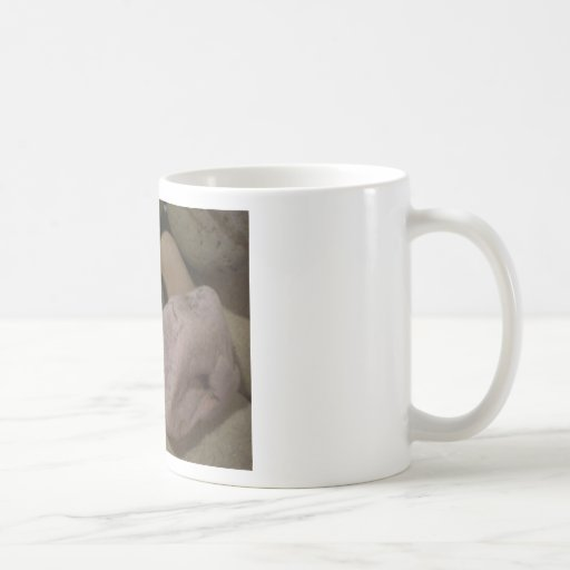 Beach Stones Coffee Mugs