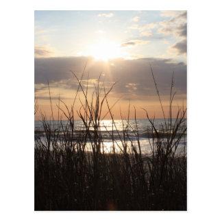 Beach Sunrise Postcard