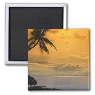 Beach sunset magnet