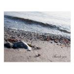 Beach thank you postcards