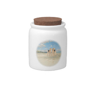 Beach Time Candy Dish