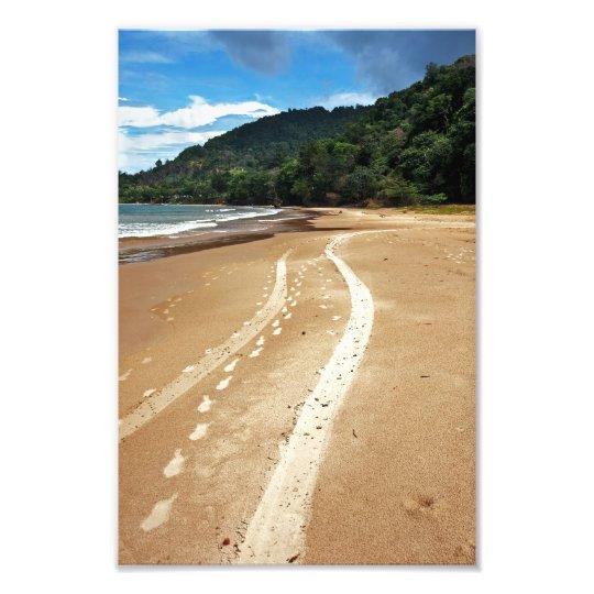 beach tracks photo print