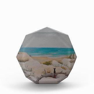 Beach Traveler Acrylic Award