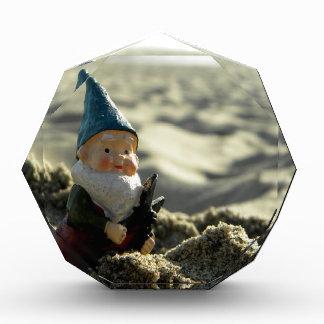 Beach Trek Acrylic Award