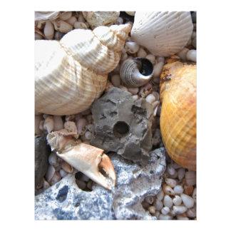 Beach Trinkets Custom Letterhead