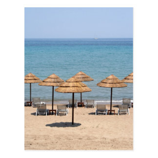 Beach Umbrellas Postcard