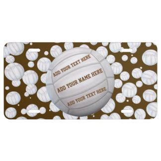 Beach Volleyballs License Plate