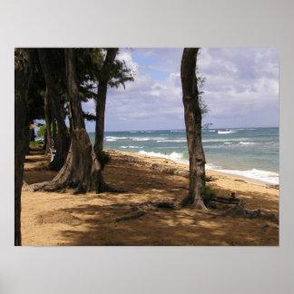 Beach, Wailua, Kauai Poster