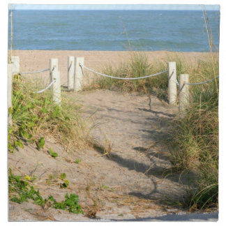 Beach walk dune roped off Florida Beach Color Cloth Napkin