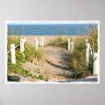 Beach walk dune roped off Florida Beach Color Print