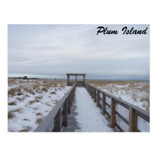 Beach Walkway Post Cards