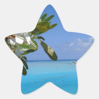 Beach Wedding Ocean Tahiti Flowers Star Sticker