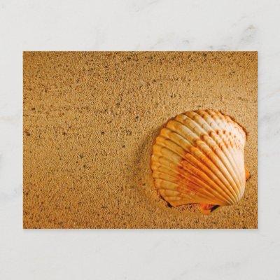 Plumeria Wedding Invitations on Beach Wedding Tropical Rsvp Invitation Post Card