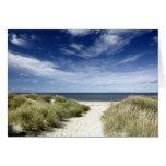Beach, Welfleet MA Card