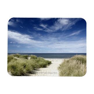 Beach, Welfleet MA Magnet