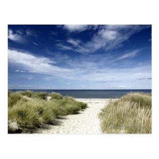 Beach, Welfleet MA Postcard