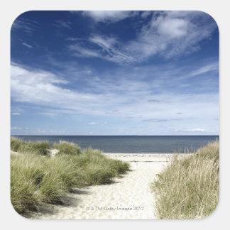 Beach, Welfleet MA Square Sticker
