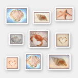 Beachcomber seashore finds sticker