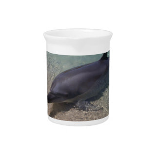 Beached Dolphin Beverage Pitcher
