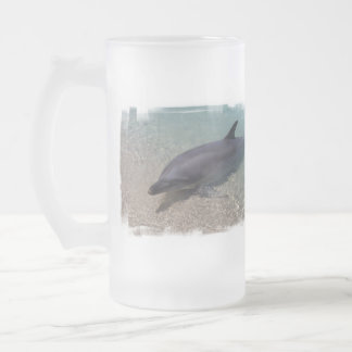 Beached Dolphin Glass Beer Mug