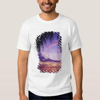 Beaches at Negril, Jamaica 2 T Shirts