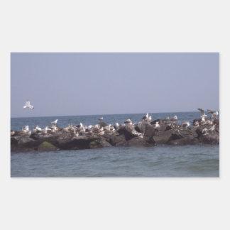 Beaches Sea Gulls Rectangular Sticker