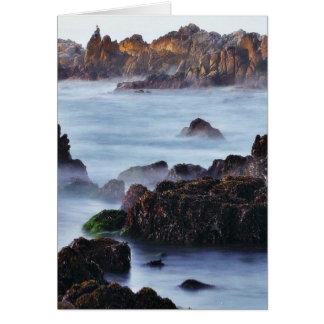 Beaches Surf Waves Card