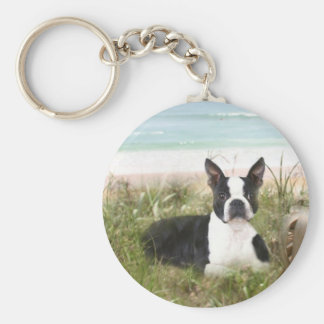 Beachgrass del llavero de Boston Terrier